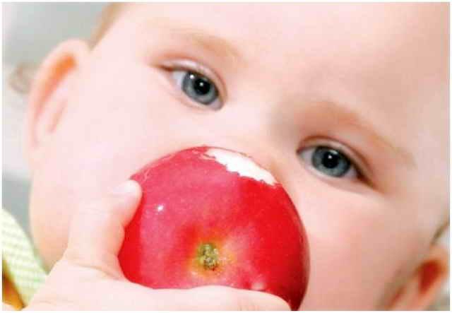 Малыш ест яблоко