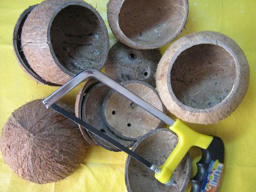 Поделка из кокоса