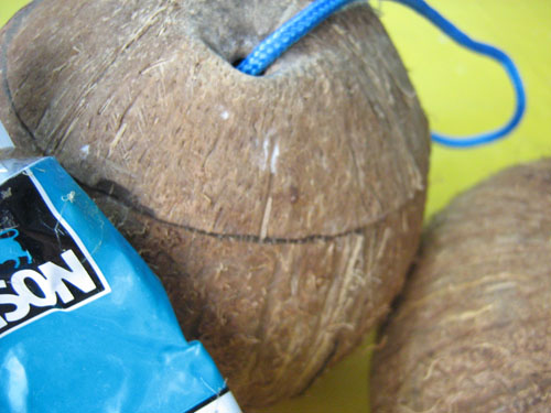 Кокосовая скорлупа